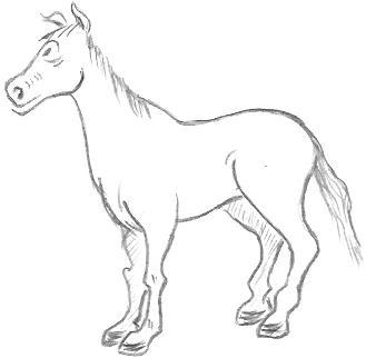 horse - Cartoon Outline Drawings