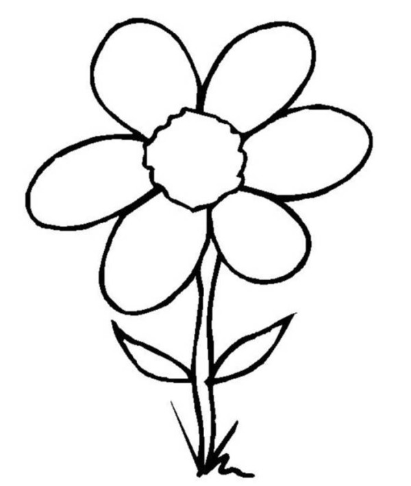 Colorings- rose flower drawing for kids